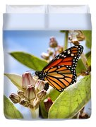 Wings Up Monarch Butterfly By Diana Sainz Duvet Cover