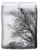Winter Afternoon 4  2013 Duvet Cover