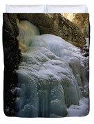 Winter At Zapata Falls Duvet Cover