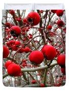 Winter Berryscape Duvet Cover