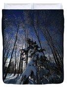 Winter Blue Duvet Cover