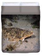 Winter Flounder Duvet Cover