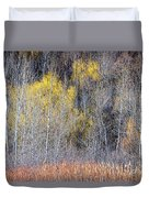 Winter Forest Landscape With Bare Trees Duvet Cover