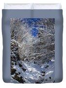 winter in the Bavarian alps 2 Duvet Cover
