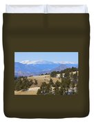 Winter In The Pike National Forest Duvet Cover
