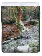 Winter In The Woods Duvet Cover by Adrian Evans