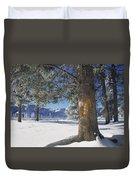 Winter In Yellowstone National Park Duvet Cover