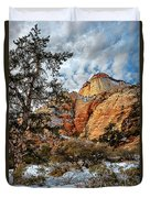 Winter Morning In Zion Duvet Cover