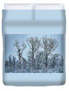 Winter Morning View Duvet Cover