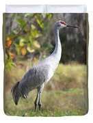 Winter Sandhill Crane Duvet Cover