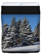 Winter Scenic Landscape Duvet Cover