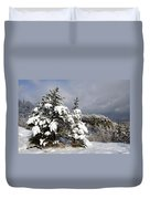 Winter Storm On Natural Bridge - D001598 Duvet Cover