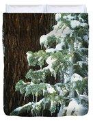 Winter Tree Sierra Nevada Mts Ca Usa Duvet Cover