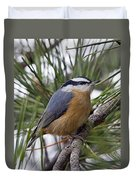 Winter Visitor - Red Breasted Nuthatch Duvet Cover