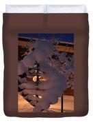 Winter Whirligig Duvet Cover
