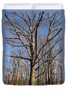 Winter White Oak Duvet Cover