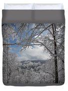 Winter Window Wonder Duvet Cover