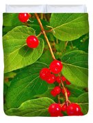 Winterberry Along Rivier Du Nord Trail In The Laurentians-qc Duvet Cover