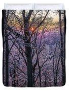 Winter's Light Duvet Cover