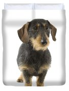 Wire-haired Dachshund Duvet Cover