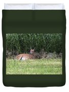 Wisconsin Doe Resting Duvet Cover