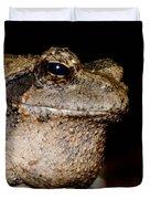 Wise Old Frog Duvet Cover