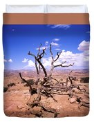 Withered Tree Paria Canyon Duvet Cover