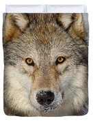 Wolf Face To Face Duvet Cover