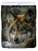 Wolf Upclose 2 Duvet Cover