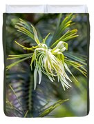 Wollemi Pine Duvet Cover