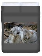 Wolves Playing Duvet Cover
