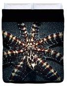 Wonderpus Octopus Duvet Cover