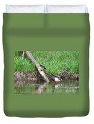 Wood Duck And Mallard Duvet Cover