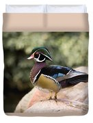 Wood Duck Drake In Breeding Plumage Duvet Cover