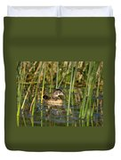 Wood Duck Drake Duvet Cover