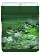 Wood Ducks Hanging Out Duvet Cover