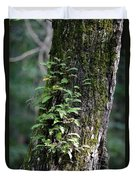 Wood Flora 2013 Duvet Cover