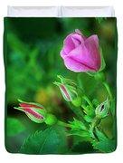 Wood Rose Buds Rosa Woodsii Wild Duvet Cover