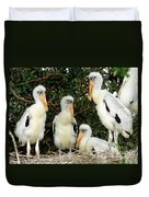 Wood Stork Young In Nest Duvet Cover