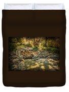 Woodard Park Koi Pond Duvet Cover by Tamyra Ayles