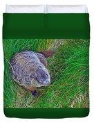 Woodchuck In Salmonier Nature Park-nl Duvet Cover