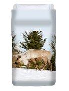 Woodland Caribou Duvet Cover