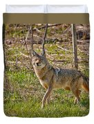 Woodland Coyote Duvet Cover