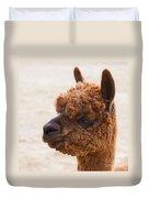 Woolly Alpaca Duvet Cover