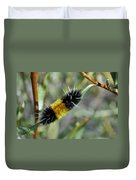 Woolly Worm In Yellowstone National Park Duvet Cover