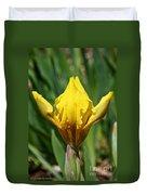 Wow The Dwarf Iris Duvet Cover