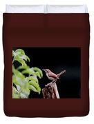 Wren - Carolina Wren - Bird Duvet Cover