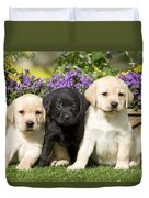 Yellow And Black Labrador Puppies Duvet Cover