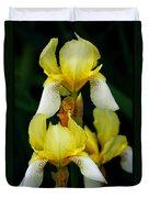 Yellow And White Irises Duvet Cover