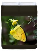 Yellow And Yellow Sulphur Butterfly Duvet Cover